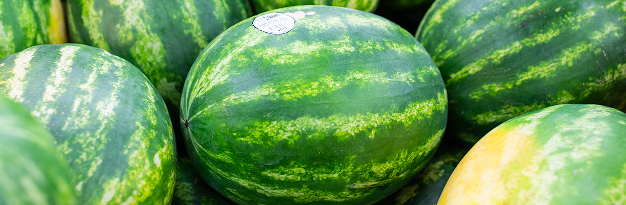 Bodacious Produce